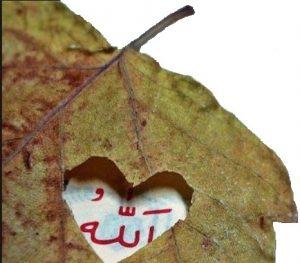 Kalp Zikirle Gafletten Uyanır 1 İlim Saati